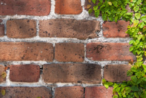 brick wall with white mortar